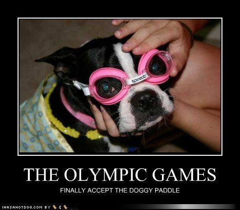 funny dog pictures olympic games