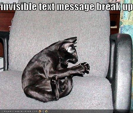 funny pictures black cat invisible text message breakup
