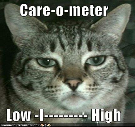 funny pictures care meter cat