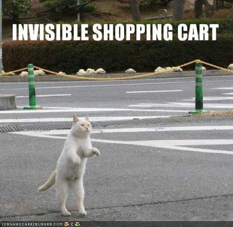 funny pictures cat invisible cart