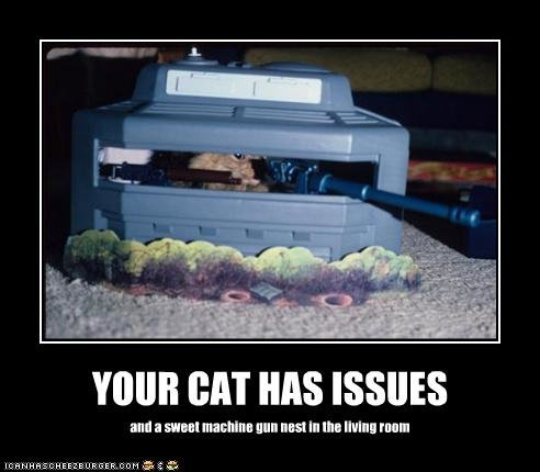 funny pictures cat issues