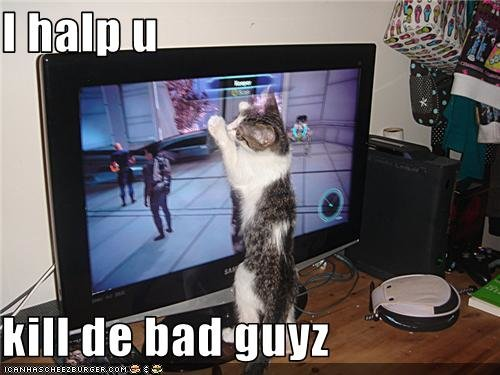 funny pictures cat helps