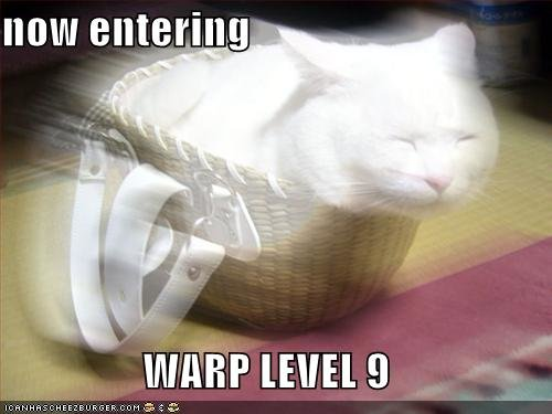 funny pictures cat now entering warp level nine