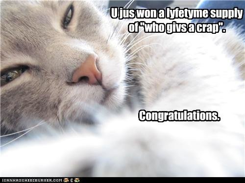 funny pictures cat tells won