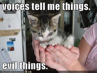 funny pictures evil cute kitten hands