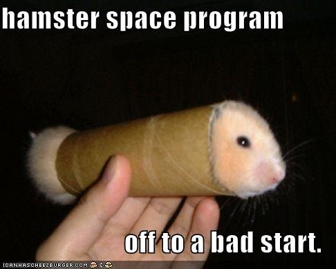 funny pictures hamster toilet paper roll