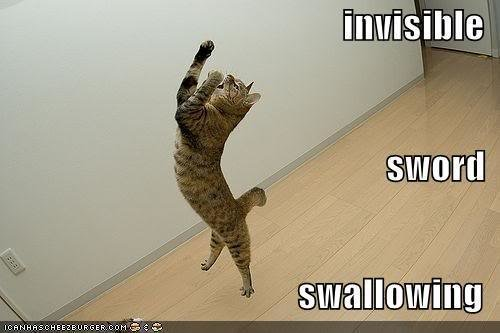 funny pictures invisible sword swal