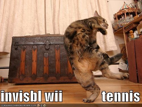 funny pictures invisible wii tennis cat