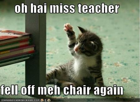 funny pictures kitten fell off chair