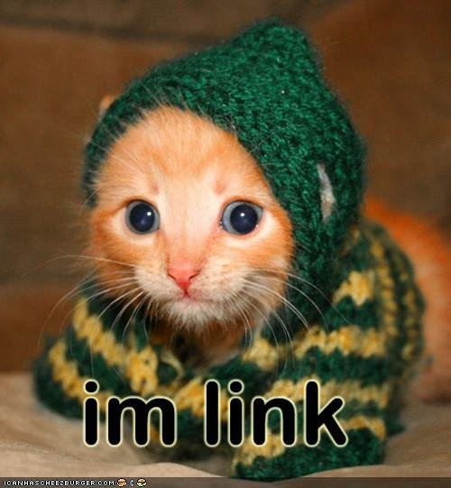 funny pictures kitten link