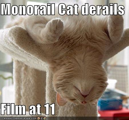 funny pictures monorail cat derails