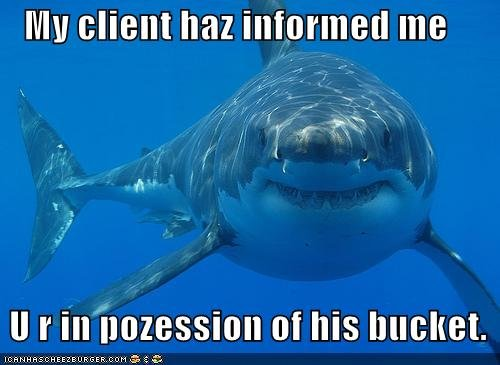 funny pictures shark bucket