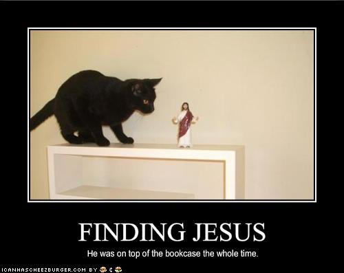 funny pictures your cat found jesus
