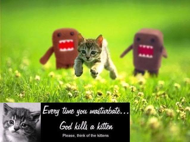 god kills kitten