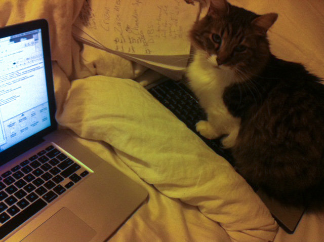 use decoy keyboard get any work done