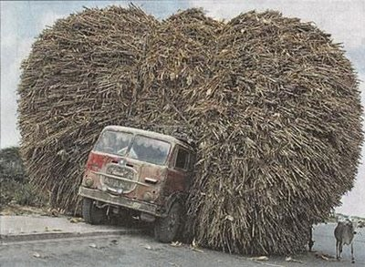 heavy load truck india