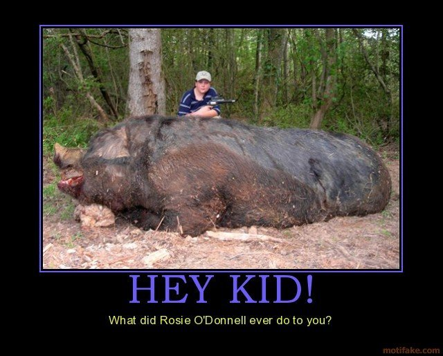 hey kid rosie donnell demotivational poster