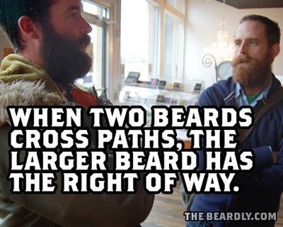 horizontal beardly paths