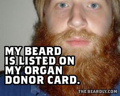 horizontal beardly donation