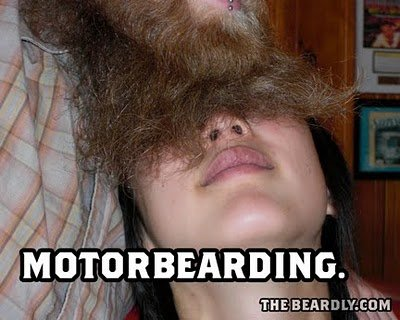 horizontal beardly motor