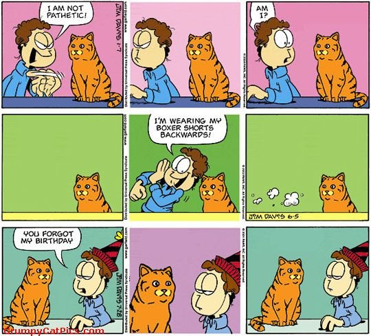 comics would look garfield replaced real cat funny comics picture