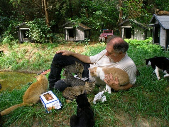 image00231 - man built a sanctuary for homeless cats
