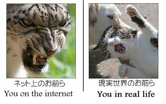 internet tough guy syndrome japanese style