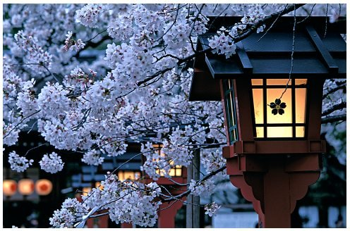japan 4 - top five places in the world you want to go