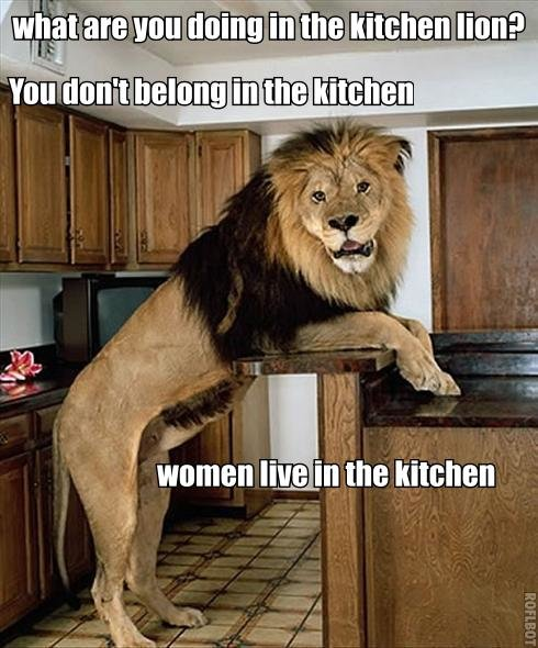 lion kitchen