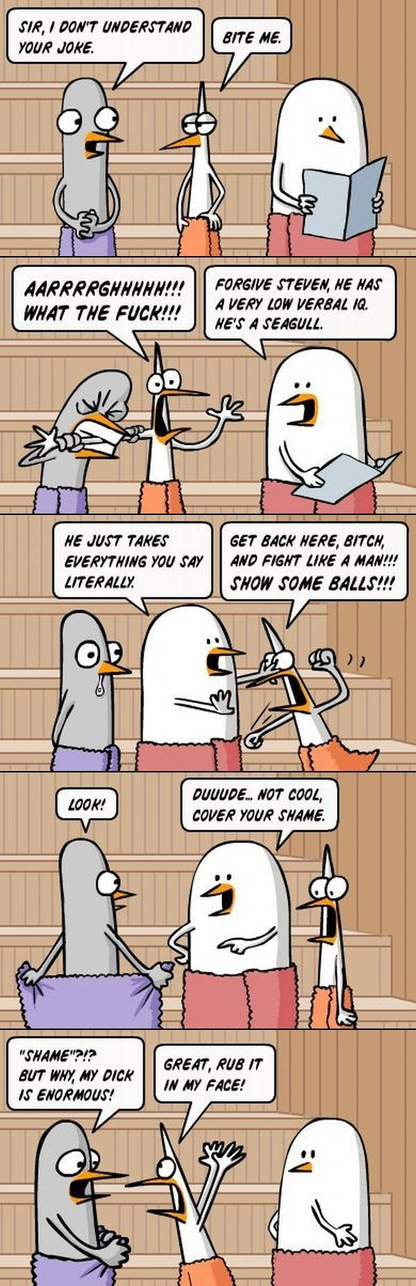 literalbirdscomic - yet some more pics and a joke or two i thought id share