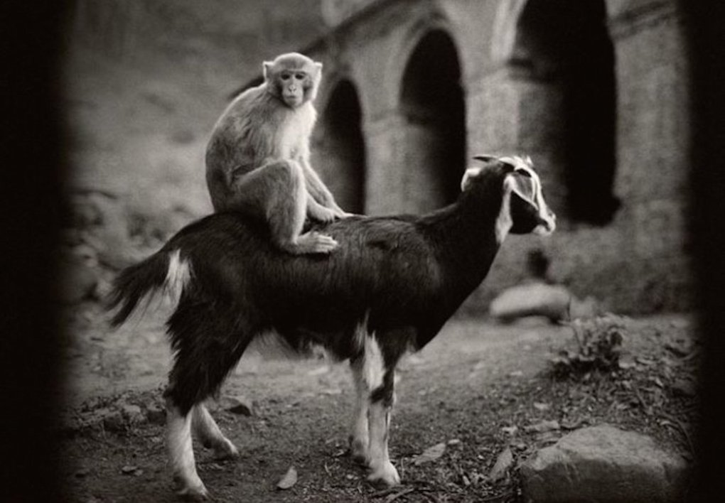 lol - amazing photos from the past