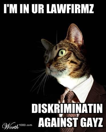 lolcat20sullivan20cromwell20aaron20charney20above20the20law20blog - funneh cat pics