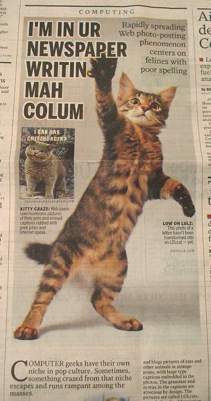 lolcats - what is your favorite animal(s)?