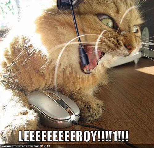 lolcats funny pictures leroy jenkins funneh cat pics