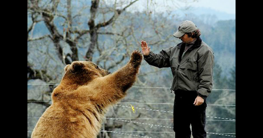 man and bear23 - a man and his grizzly bear
