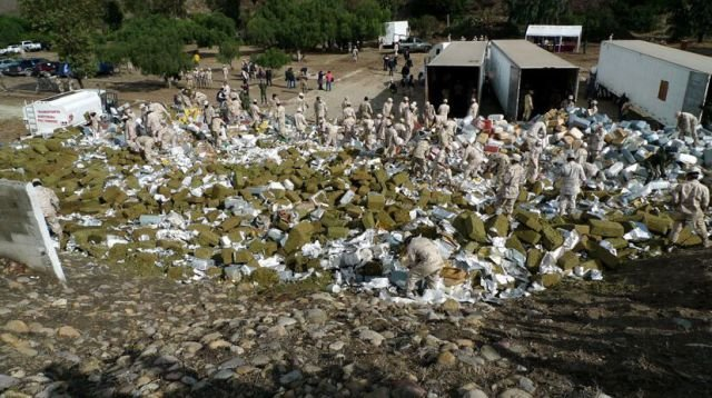 marijuana 640 01 - mexico burns 134 tons of confiscated marijuana
