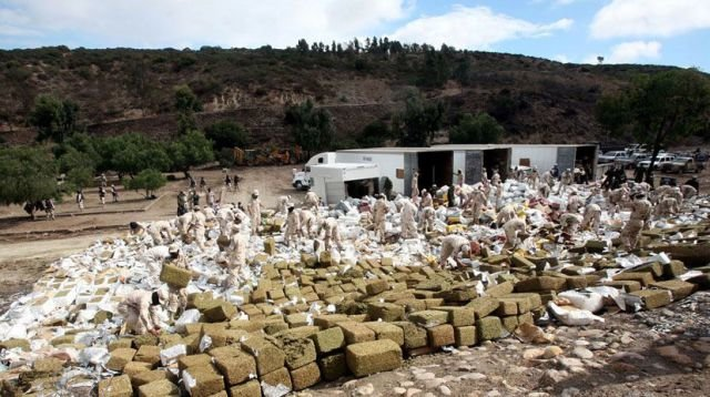marijuana 640 03 - mexico burns 134 tons of confiscated marijuana