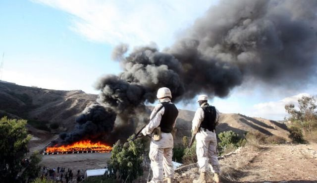 marijuana 640 09 - mexico burns 134 tons of confiscated marijuana