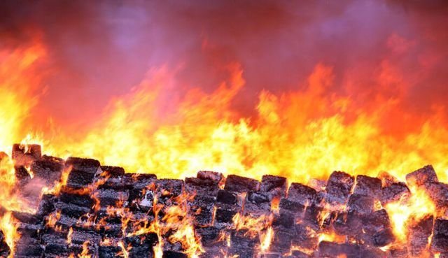 marijuana 640 13 - mexico burns 134 tons of confiscated marijuana