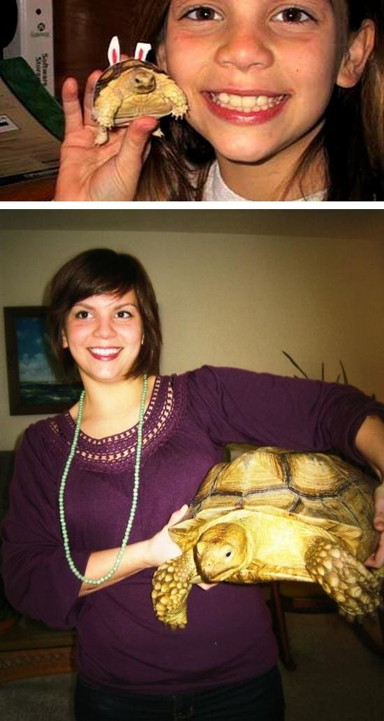 me and my turtle - people and their pets getting older together