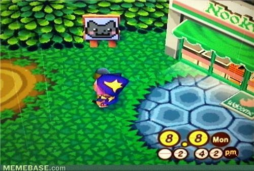 memes animal crossing now nyan ified