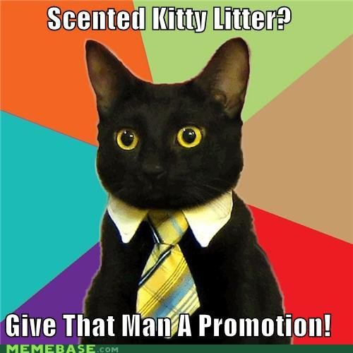 memes business cat scented kitty litter give man promotion