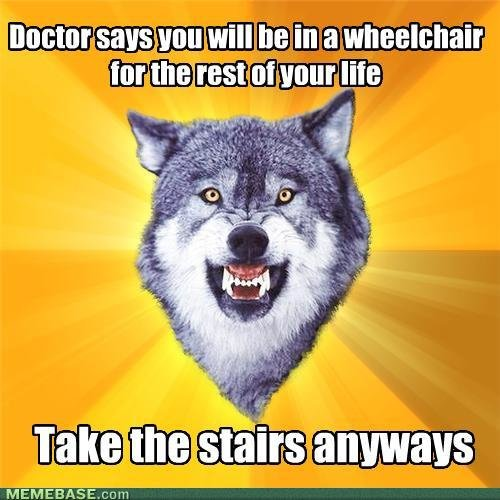 memes courage wolf handicapable