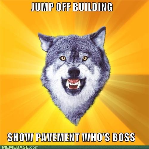 memes courage wolf jump off building show pavement whos boss