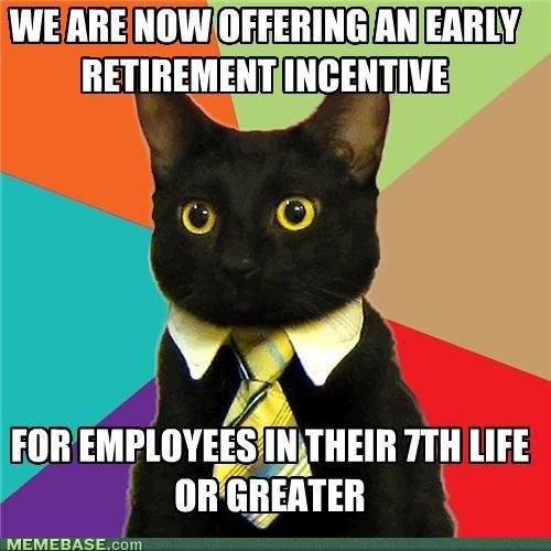memes for employees their life greater