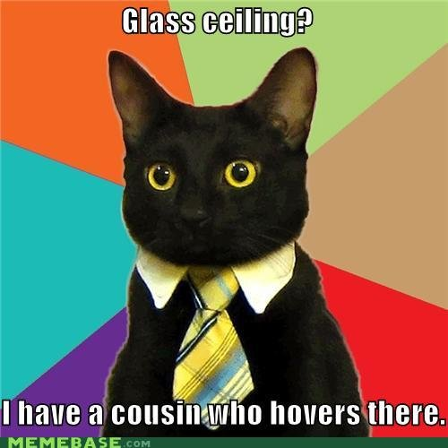 memes glass ceiling cousin who hovers there
