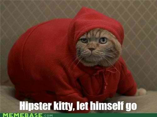 memes hipster kitty fat