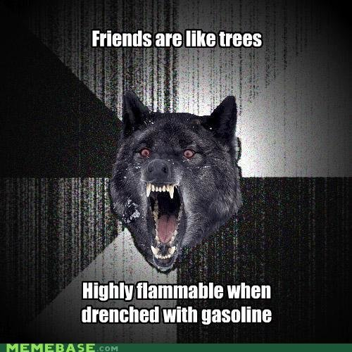 memes insanity wolf friends are like trees