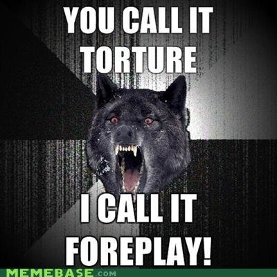 memes insanity wolf torture