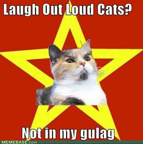 memes laugh out loud cats not gulag